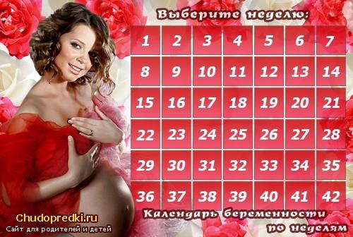 Календарь беременной фото