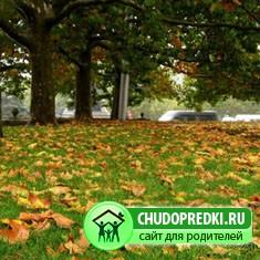 Осенний смех