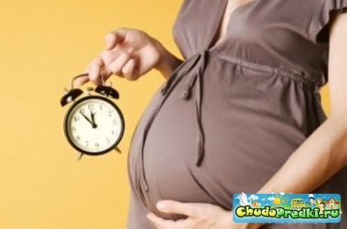 Беременность срок рожать