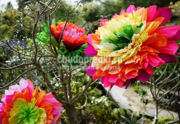 как сделать цветы из бумаги: www.chudopredki.ru/7145-kak-sdelat-cvety-iz-bumagi.html