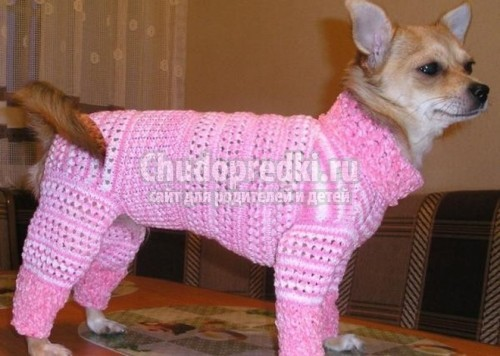 Вязание для собак своими