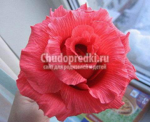 Цветы из гофрированной бумаги своими руками пошаговое с конфетами