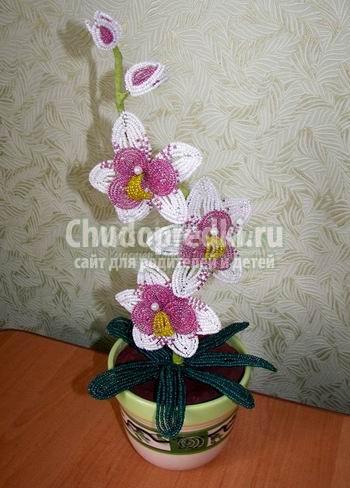 Бисероплетение мастер класс с пошаговым фото орхидея