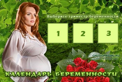 Календарь беременности по триместрам. Наш сервис