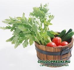 Стихи об овощах на огороде