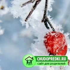 Стихотворения. Любимая зима