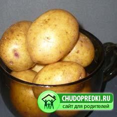 Стихи о еде. Картошка в мундире