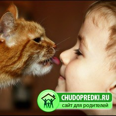 кошка и ребенка