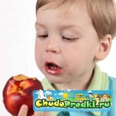 Питание ребенка. Что необходимо знать?