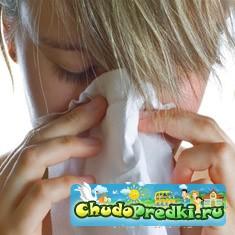 Аллергия на пыль у беременных
