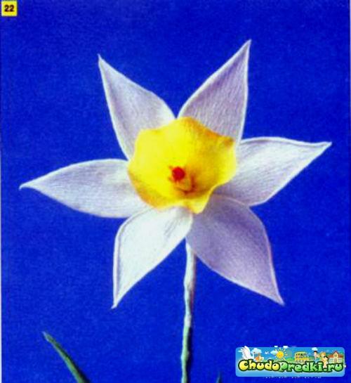 цветы из гофрированной бумаги. Нарциссы. Мастер класс с пошаговым фото