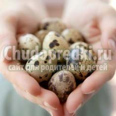 Все про пользу перепелиных яиц для детей