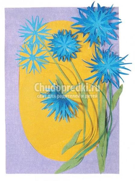 Картинки цветок василек для детей