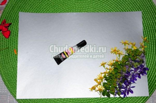 Аппликация из цветов «Радуга»