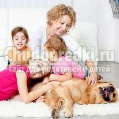 Как выбрать собаку для ребенка?