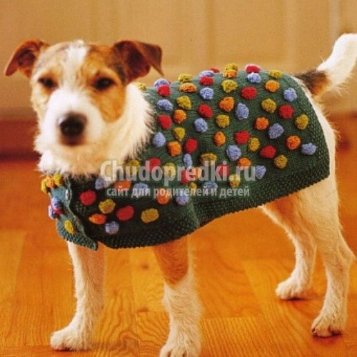 Попона для собак своими руками вязание