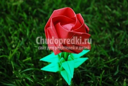 Оригами. Роза из бумаги