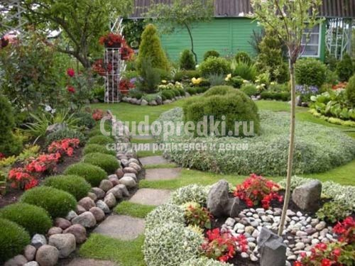 10 полезных советов, как сделать сад красивым - Фото 6