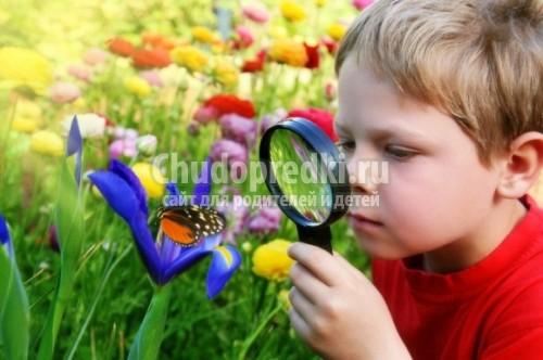 Чем заняться с ребенком летом: полезные советы