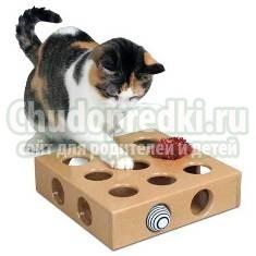 Игрушки для котят своими руками. Как сделать?