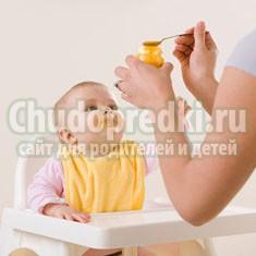 Как вводить прикорм: советы мамочкам