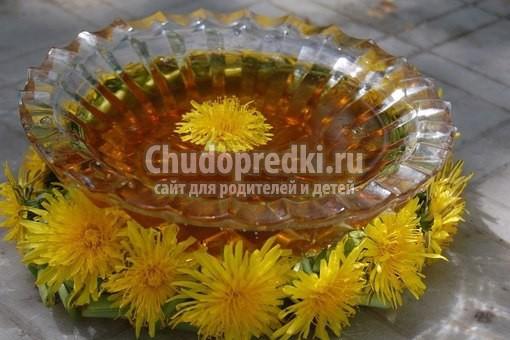 варенье из одуванчиков: популярные рецепты с фото