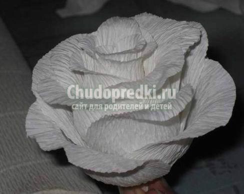 Розы из гофрированной бумаги: фото, идеи и мастер-классы