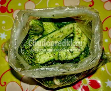 Быстрые малосольные огурцы: золотые рецепты с фото