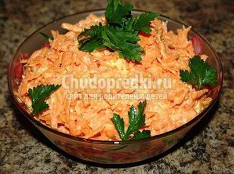 Морковь с чесноком: лучшие рецепты с фото
