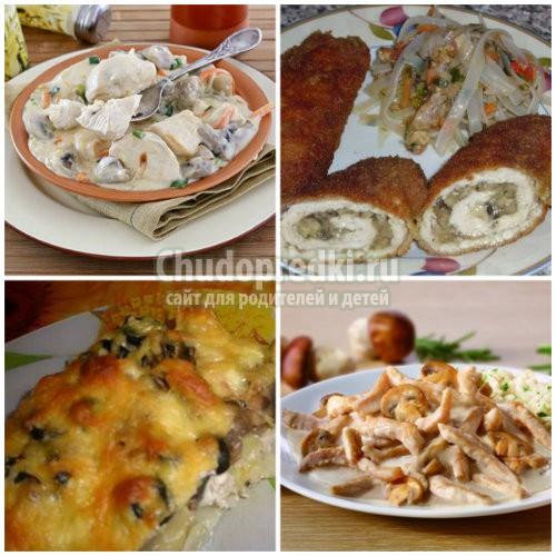 Куриное филе с грибами: подробные рецепты с фото