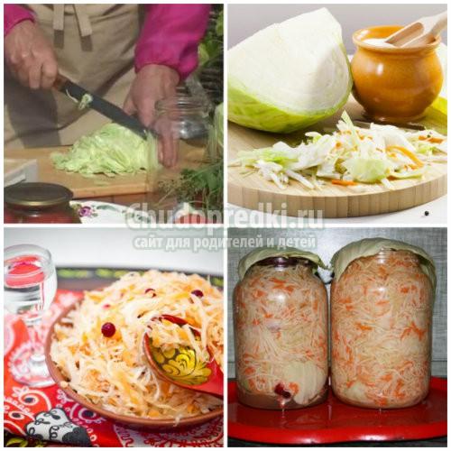 Засолка капусты на зиму в банках: подробные рецепты с фото
