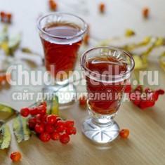 Настойка из рябины: готовим вкусно и полезно