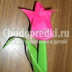 Тюльпаны из бумаги своими руками: фото и идеи