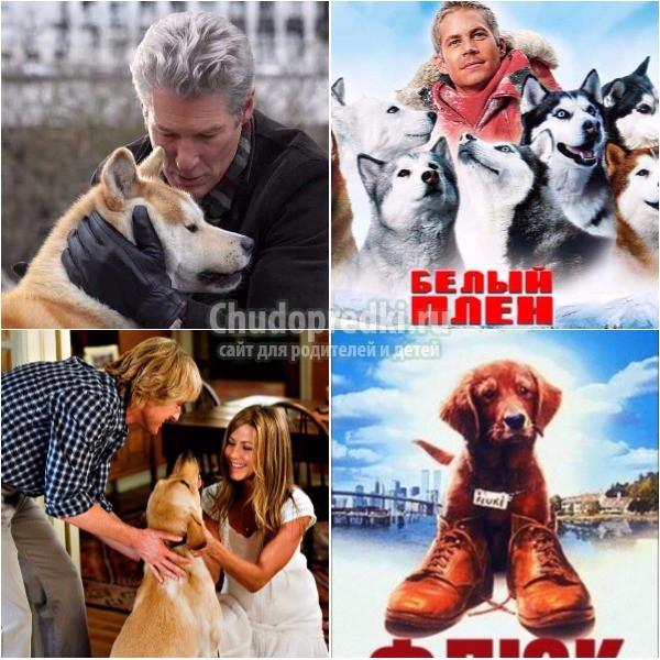 Фильмы про собак Новый год 2018. ТОП-10 популярных