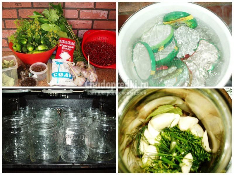 Огурцы на зиму в литровых банках: золотые рецепты с фото
