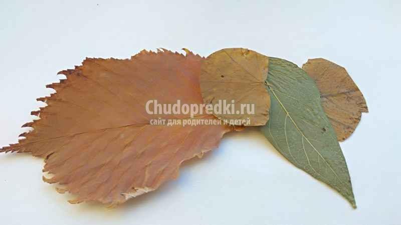 Аппликация из сухих листьев Слон